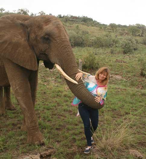 Interact with Elephants Hartbeespoort