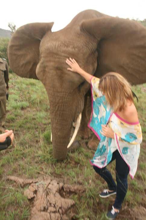 Elephant Tours Northwest Province
