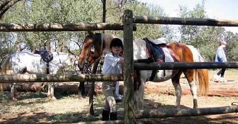 Adventure for Kids at Hollybrooke Farms