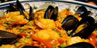 De Vette Mossel Seafood Restaurant