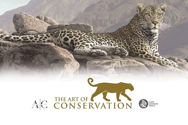 the-art-of-conservation
