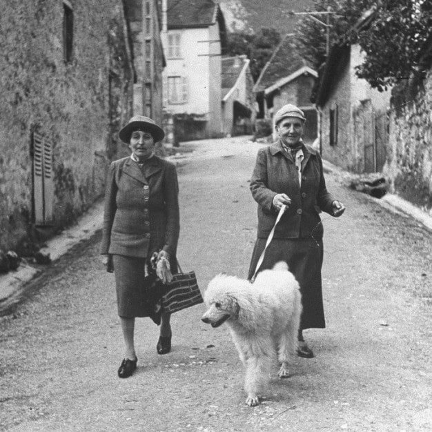 Gertrude Stein And A Companion.jpg