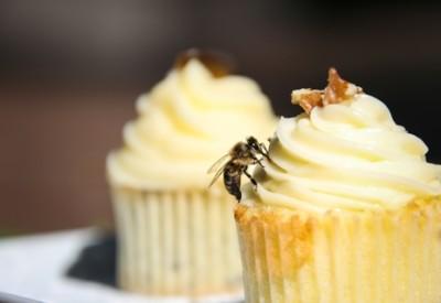 Delheim Fynbos Cupcakes LR 4