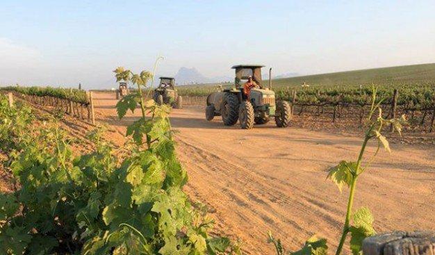 Wine and tractors