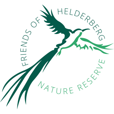Friends of Helderberg Nature Reserve