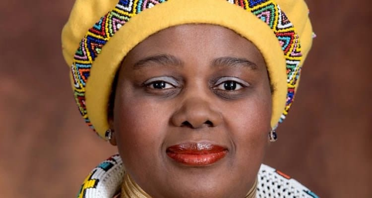 New tourism minister announced for SA