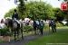 avontuur-horses026