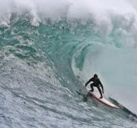Twiggy Surfing Dungeons, Cpt