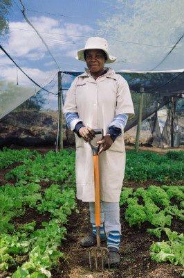 Hlokomela Farm