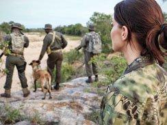 Rhino poaching Movie