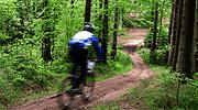 Mountainbiking in knysna