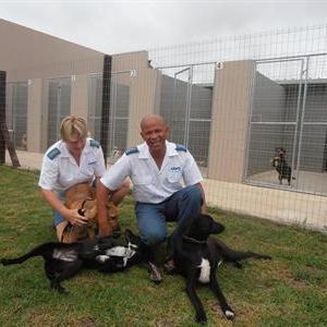Newly appointed PAWS kennel manager, Tracey van der Bijl and longstanding PAWS inspector, Robert Ruiters with some playful puppies outside the new PAWS kennels.
