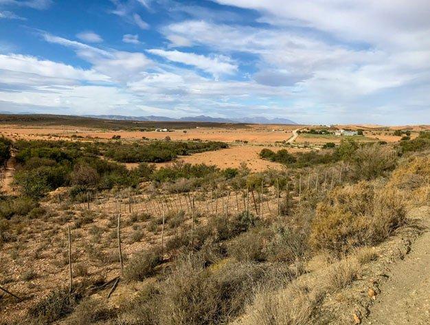 Ox Wagon Trail Karoo Vistas