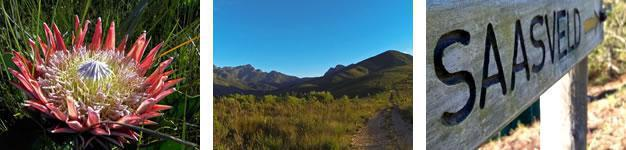 Tierkop hiking Trail, George, Garden Route