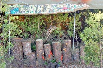 Timber Festival 2017