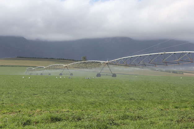 Preparing RSA agriculture for exponential population growth and climate change