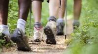 Hiking Trails - Middelburg