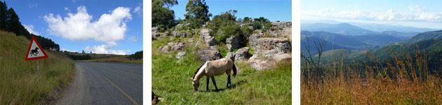 Kaapschehoop Wild Horses & Scenery