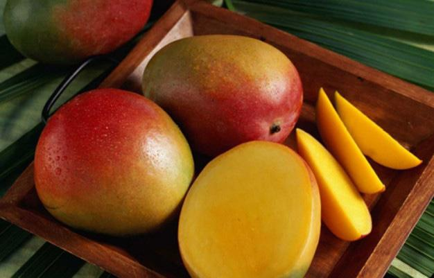 Mango Mango Varieties Recipes And More Nelspruit