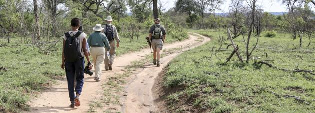 Kruger Track and Trail Hike-1