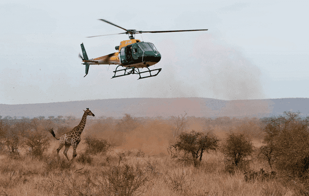 Nelspruit » Blog Archive » An Aerial View of Kruger National