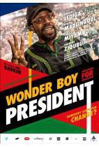 wonderboy-for-president.zp455