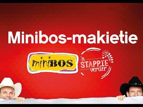 minibos-2