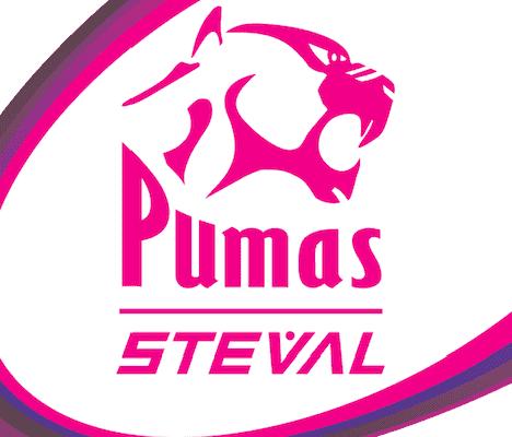 pumas-with-steval