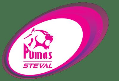 2016_pumas_designs_with_steval1