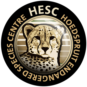 hesc-logo-black
