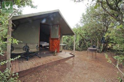 Spekboom camp