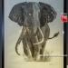 Weylandts-Art-Expo-29-of-48
