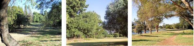 Views of the Arboretum