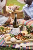 Nederburg picnics (14)
