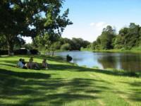 bergriver picnic