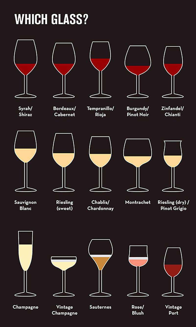 Which Wine Glass And Why Paarl