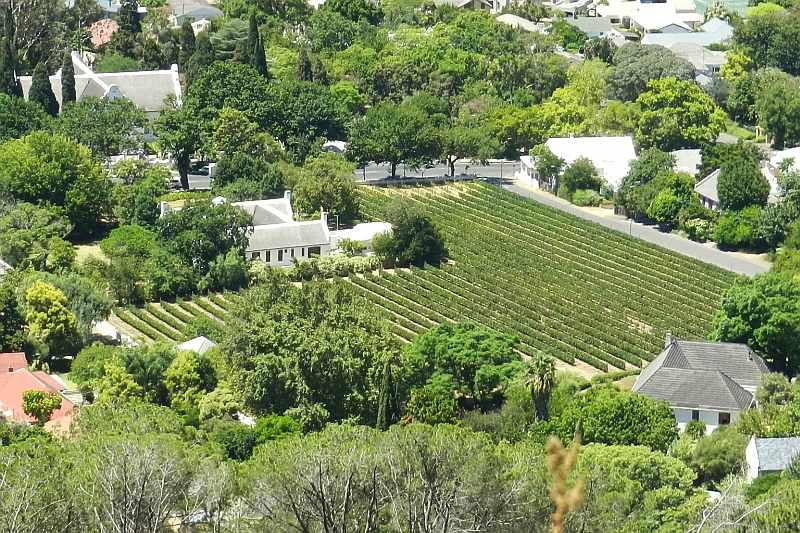 Beautiful Paarl - 2016 images