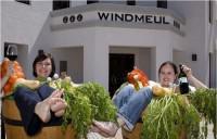 windmeul-200x128