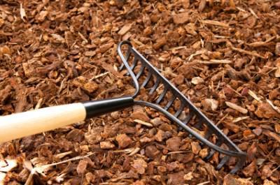 Retain soil moisture with bark mulch. Image source: allianceforwaterefficiency.org