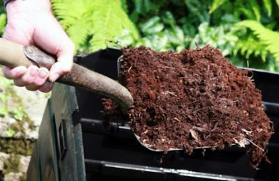 Organically enriched soil has a superior water-retaining capacity. Image courtesy: gardeninginfozone.com