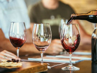 wine tasting winelands