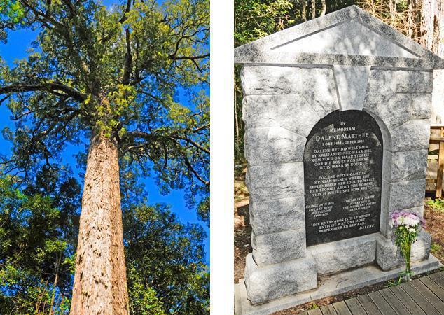 Dalene Mathee Grave