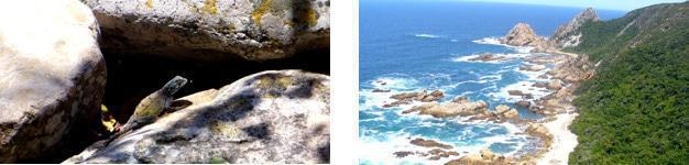 Scenes from the Kranshoek Hiking Trail, Plettenberg Bay