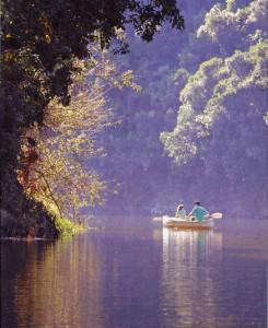 Kayakers enjoying a beautiful morning on the Wilderness waterways.