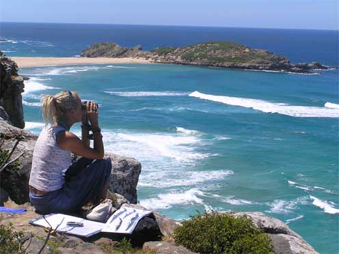 Whale watching at Robberg Nature Reserve