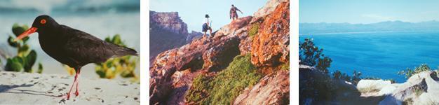 Robberg Nature Reserve, Plettenberg Bay