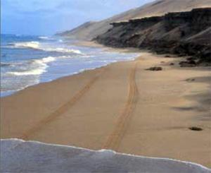 The long wall of dunes of the Namib Desert allows the narrowest of highways, which is negotiable only at low tide.
