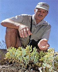 Louis Jordaan playing with plants