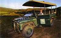 Game viewing drive