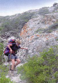 Kranshoek coastal hiking trail